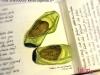 tulibri-allerbestes-Reisetagebuch24