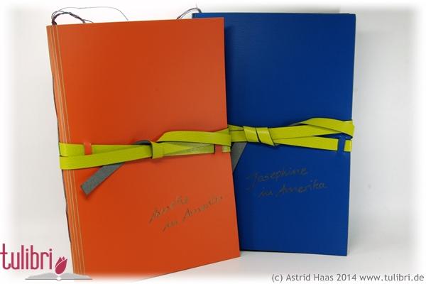 Amerika-Tagebuch